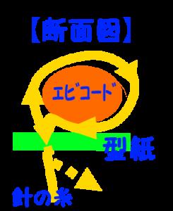 コードの固定の仕方の断面図
